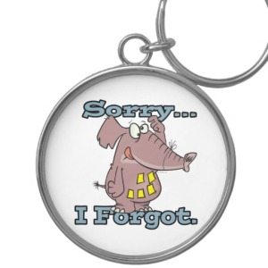 cute_sorry_i_forgot_funny_forgetful_elephant_keychain-rafab8c463ca74cd5bbc6e9301a1cd3ac_x76wx_8byvr_512